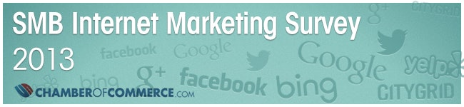 2013 SMB Internet Marketing Survey