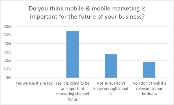 Importance of mobile marketing
