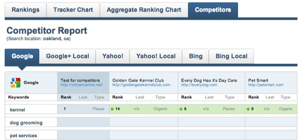 See competitor search rankings