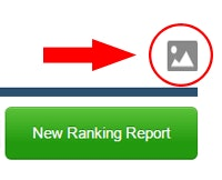 SERP for Local Ranking Report