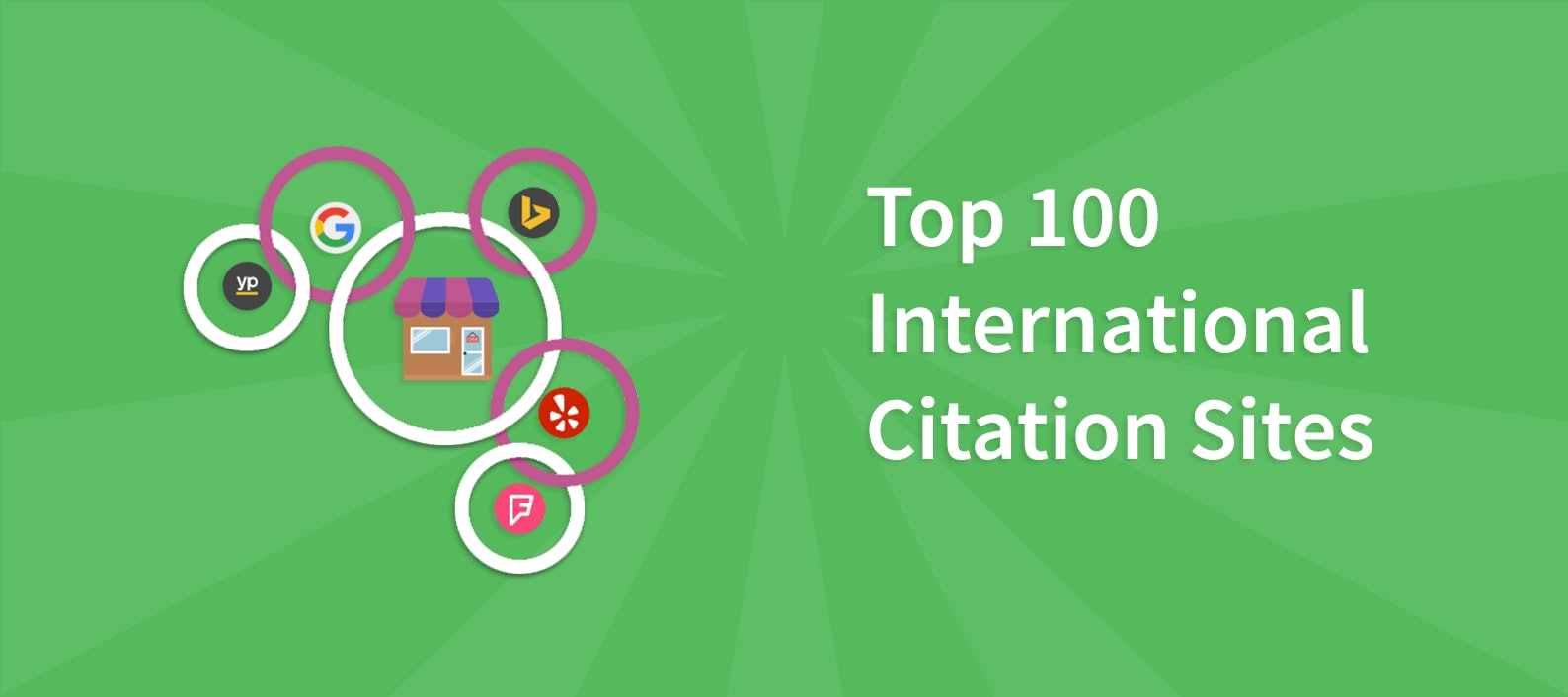 Top 100 International Citation Sites