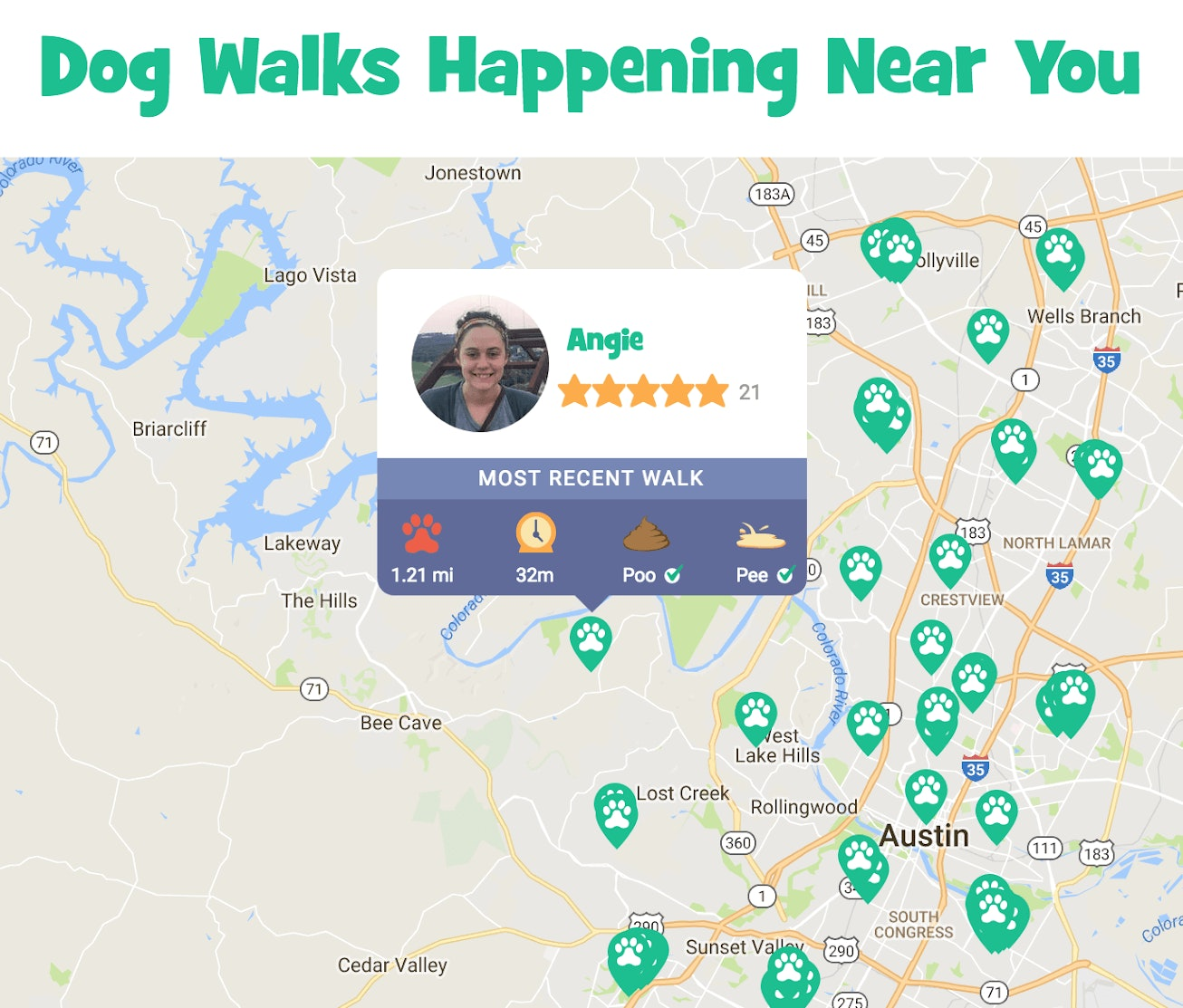 dog-walks