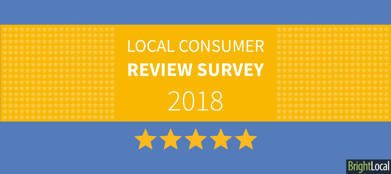 f26c45e4ecb4c0 Local Consumer Review Survey